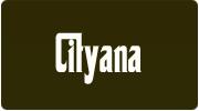 Cityana
