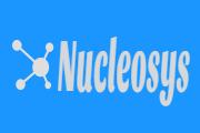 nucleosysem