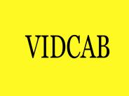 vidcab