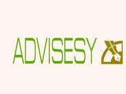 advisesy