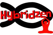 hybridzenem